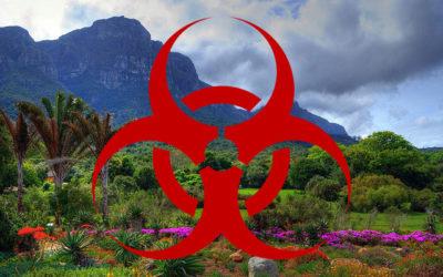 Herbicides in Kirstenbosch!