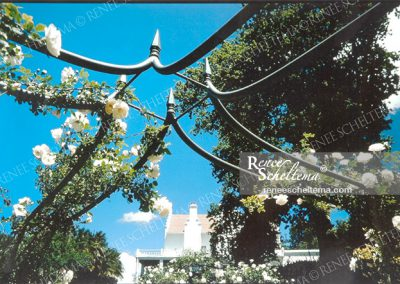 renee_scheltema_editorial_hotel_garden