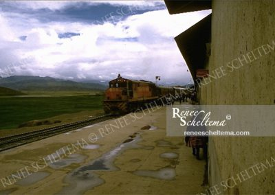renee_scheltema_travel_train_peru